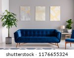 a dark blue velvet couch in...   Shutterstock . vector #1176655324