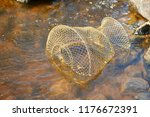the fishing basket with caught... | Shutterstock . vector #1176672391