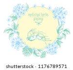 realistic botanical ink sketch...   Shutterstock .eps vector #1176789571