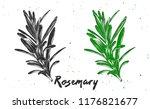 vector engraved style... | Shutterstock .eps vector #1176821677