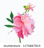 a picturesque peony flower.... | Shutterstock .eps vector #1176867814