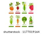 vertical cards or banners set... | Shutterstock .eps vector #1177019164