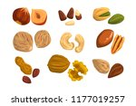 flat vector icons of nuts and... | Shutterstock .eps vector #1177019257