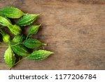 bitter gourd fruits on wooden ... | Shutterstock . vector #1177206784