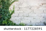 rustic wall with exposed bricks ... | Shutterstock . vector #1177228591