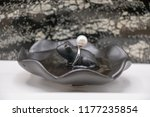 pearl ring in shell  | Shutterstock . vector #1177235854