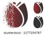 tulip bud icon in dissolved ...   Shutterstock .eps vector #1177254787