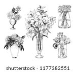 a collection of different... | Shutterstock .eps vector #1177382551