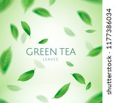 green tea leaves flying in the... | Shutterstock .eps vector #1177386034