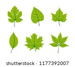 autumn sale background template ... | Shutterstock .eps vector #1177392007