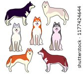 a set of illustrations of dogs. ... | Shutterstock .eps vector #1177424644