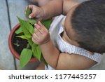 top view of little asian baby... | Shutterstock . vector #1177445257