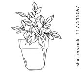 silhouette house pot plant... | Shutterstock .eps vector #1177515067