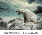 White Polar Bear Hunter On The...