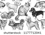 Stock vector cute puppies and kittens set home pets isolated on white background sketch vector illustration 1177712041