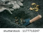 coins searching. treasure... | Shutterstock . vector #1177713247