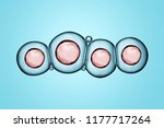 macro close up of soap bubbles... | Shutterstock . vector #1177717264