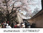 many tourists and people come... | Shutterstock . vector #1177806517