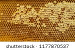 honeycombs with honey. natural... | Shutterstock . vector #1177870537