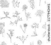 wildflowers berries seamless... | Shutterstock .eps vector #1177942441