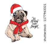 Stock vector adorable beige puppy pug in a santa s cap and with a red scarf be merry and bright lettering 1177963321