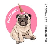 adorable beige puppy pug in a... | Shutterstock .eps vector #1177963327