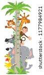 giraffe  monkey  tiger. meter... | Shutterstock .eps vector #1177984921