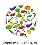 set of fresh seasonal... | Shutterstock .eps vector #1178002501