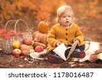 little girl reading her first... | Shutterstock . vector #1178016487