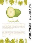 ambarella exotic juicy fruit... | Shutterstock .eps vector #1178065441