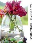 beautiful fresh flowers  bright ...   Shutterstock . vector #1178114791