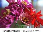 beautiful fresh flowers  bright ...   Shutterstock . vector #1178114794