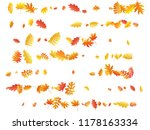oak  maple  wild ash rowan... | Shutterstock .eps vector #1178163334