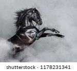 black andalusian horse rearing... | Shutterstock . vector #1178231341