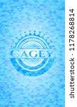 Cagey Light Blue Emblem With...