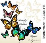 Stock vector vector illustration with butterflies 117838141