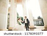 lovely happy wedding couple ... | Shutterstock . vector #1178393377