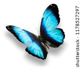 Stock photo blue butterfly with shadow isolated on white background 1178527297