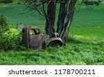 Rusted Truck Overgrown By Vine...