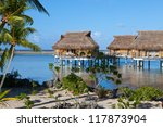 seacoast with palm trees and... | Shutterstock . vector #117873904