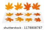 set of maple leaves. 4...   Shutterstock .eps vector #1178808787
