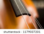 closeup detail view at the... | Shutterstock . vector #1179037201