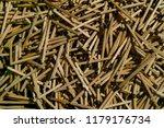 wooden match. matches for... | Shutterstock . vector #1179176734