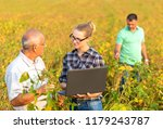 group of farmers with laptop... | Shutterstock . vector #1179243787