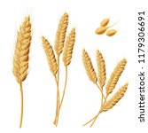 set of illustrations of wheat... | Shutterstock . vector #1179306691