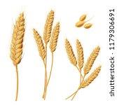set of illustrations of wheat... | Shutterstock . vector #1179306691