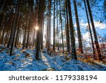 snowy fir forest with sunbeam... | Shutterstock . vector #1179338194