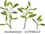 sprigs of mistletoe   Shutterstock .eps vector #117940117