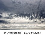 white  grey heavy fluffy ...   Shutterstock . vector #1179592264
