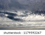 white  grey heavy fluffy ...   Shutterstock . vector #1179592267